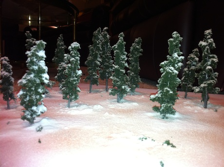 Modeling winter trees